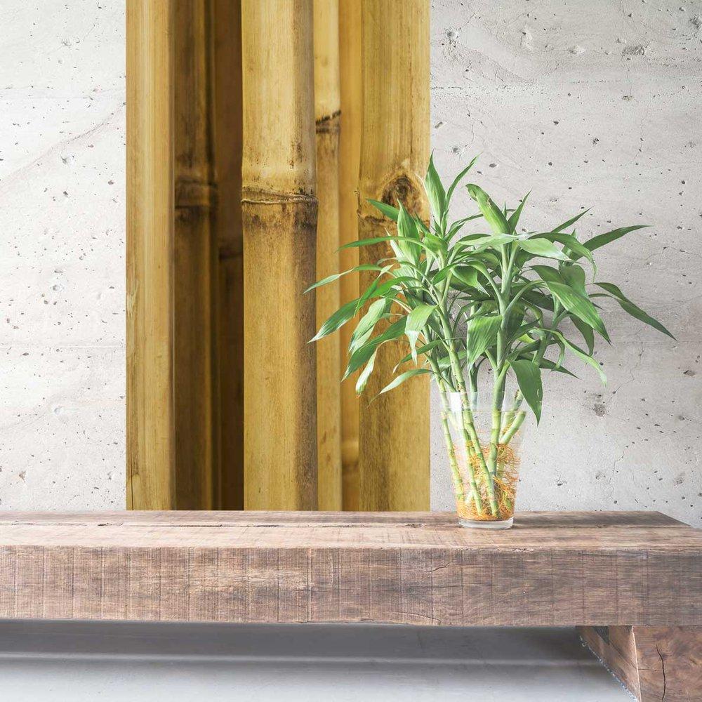 papier peint imitation bambou. Black Bedroom Furniture Sets. Home Design Ideas