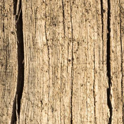 Papier Peint Motif Bois Tapisserie Nature
